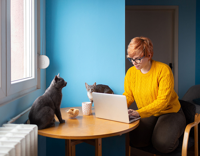 woman sitting at kitchen table with laptop and two cats